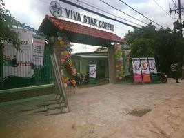 VIVA STAR COFFEE TÚ XƯƠNG