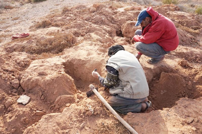 Snake Catchers - Moroccan Sahara