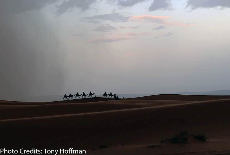 chased by sandstorm