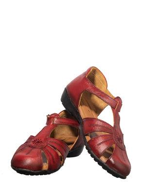 Sharon Maroon Casual Clog Sandal