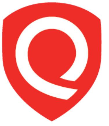 Logo SSL Server Test