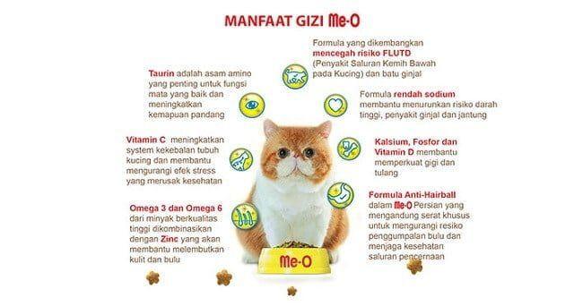 Makanan Kucing Paling Bagus