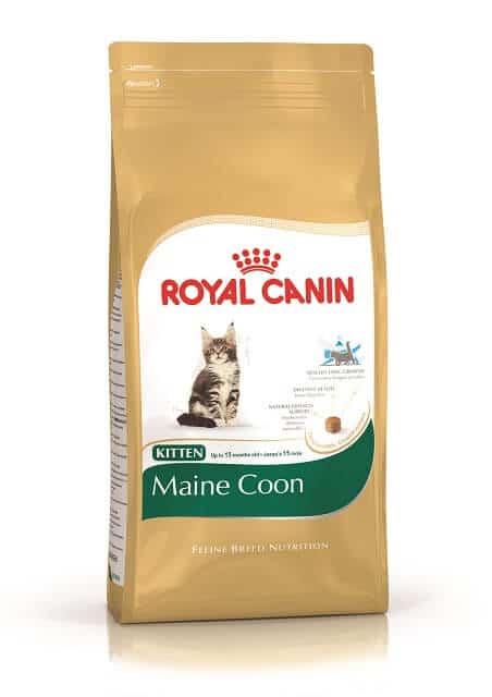 Makanan Kucing Royal Canin Maine Coon Kitten