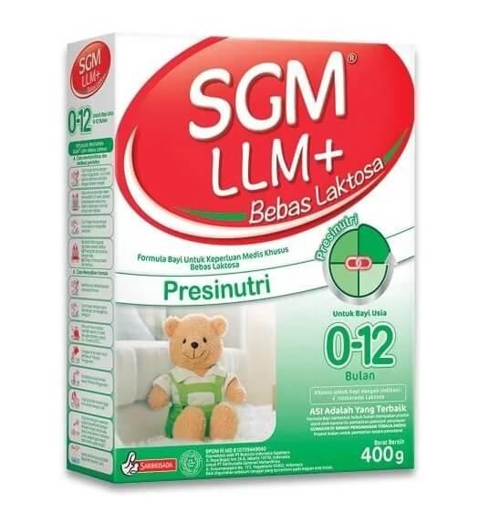 SGM LLM