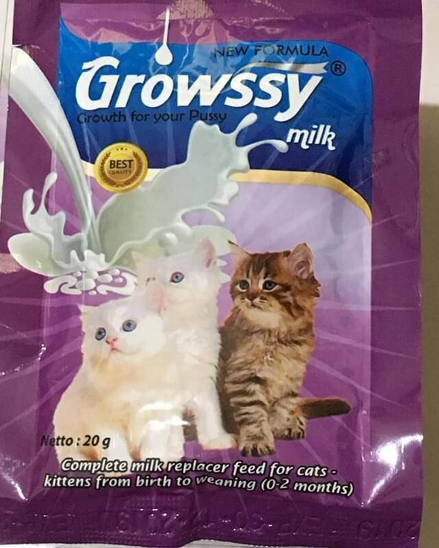 Susu untuk anak kucing