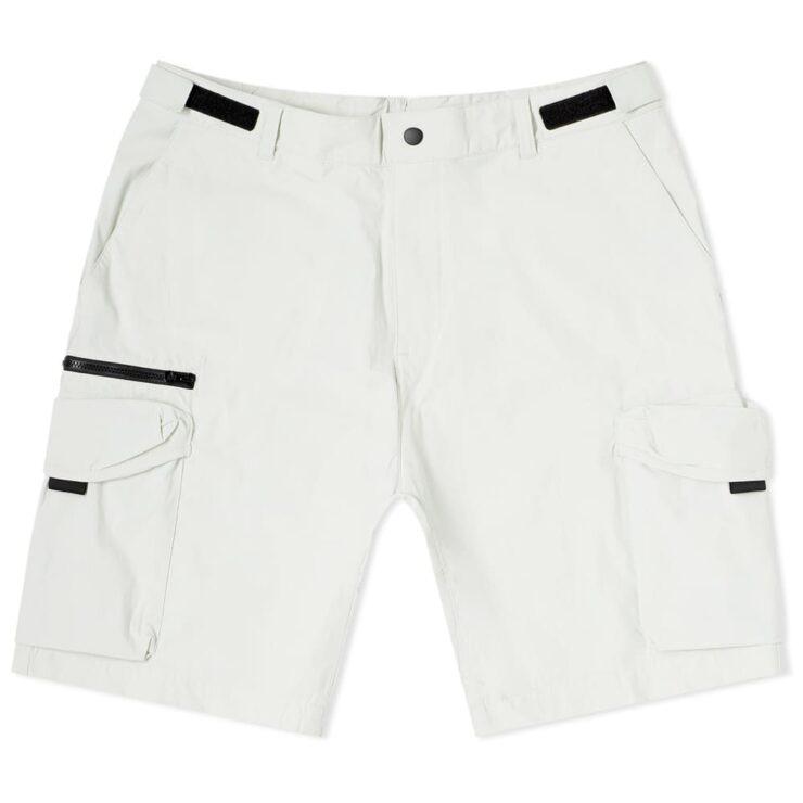 Carhartt WIP Hayes Cargo Shorts 'Pebble'