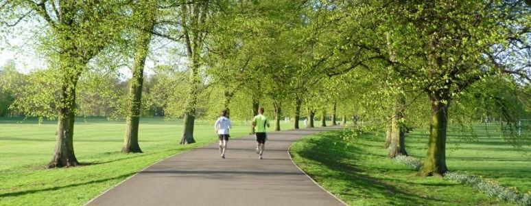 runners in Darley Park