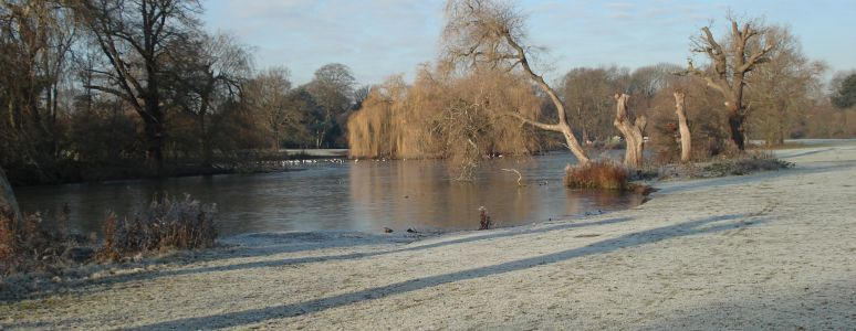 A view of Markeaton Park in Winter
