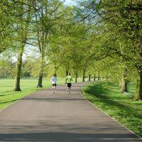 darley-park-runners.jpg