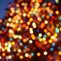 Christmas_Lights.jpeg