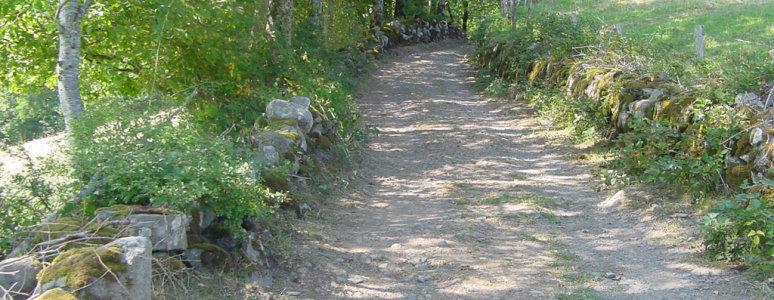 A path through the countryside