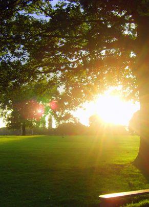 Image for Markeaton Park
