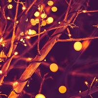 Christmas_Lights.png