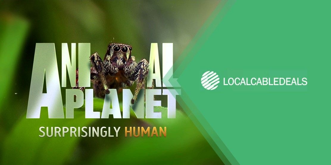 What channel is animal planet on SuddenLink