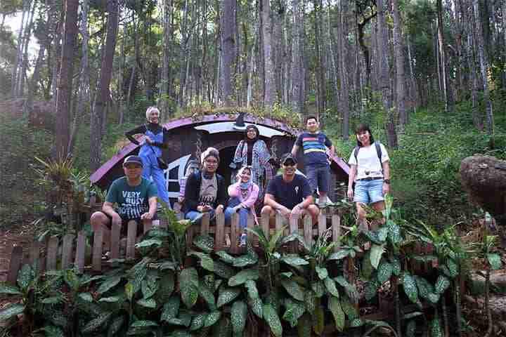 hutan pinus imogiri, pilihan favorit untuk paket wisata instagramable