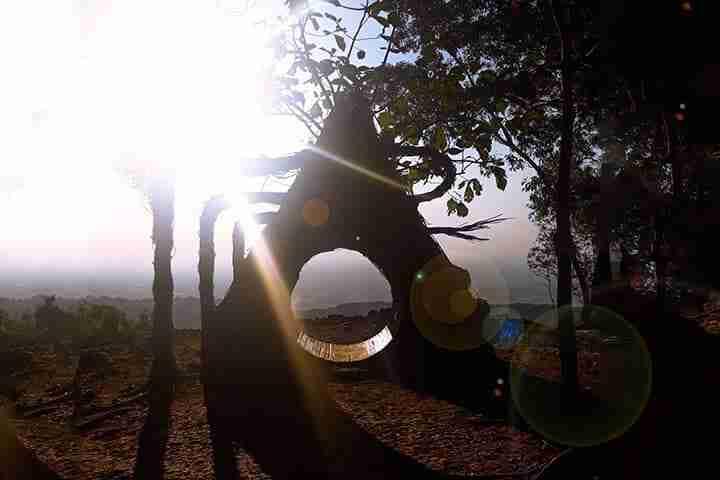 Pinus Pengger - Spot Foto Jogja - Anyaman Piramid Berbentuk Segitiga Mirip Tenda Indian