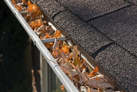 Keep your gutters clean to reduce Water damage Sydney