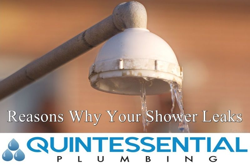 Reasons Why Your Shower Leaks