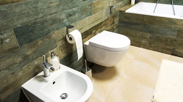 Standalone or the Conventional Bidet