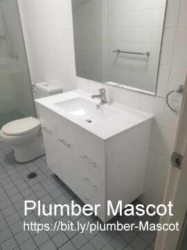 Mascot plumber