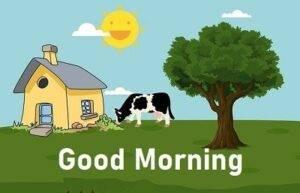 farm good morning