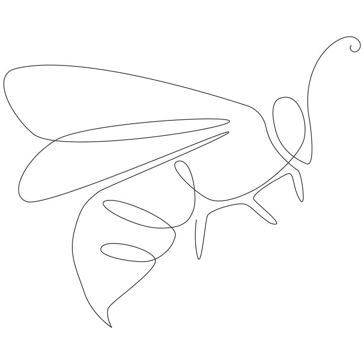 Delicate Bee