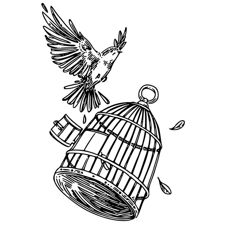 Break Free From Cage