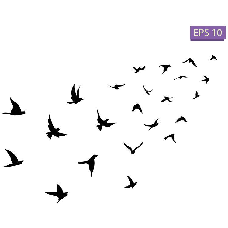 Birds Flying High