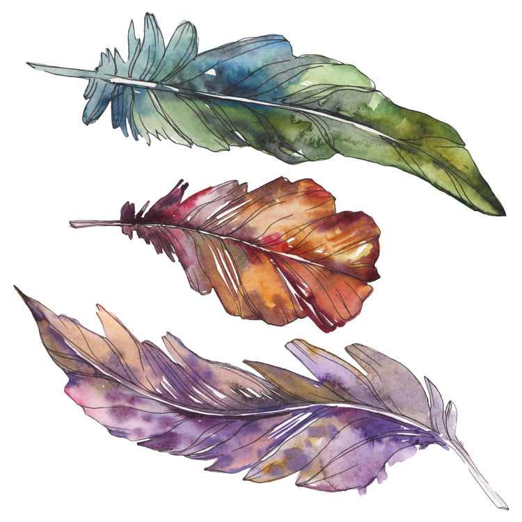 Three Feather Friends
