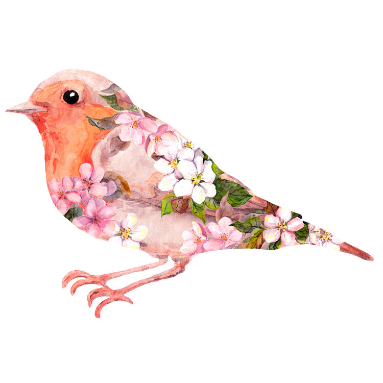 Peach Floral Bird