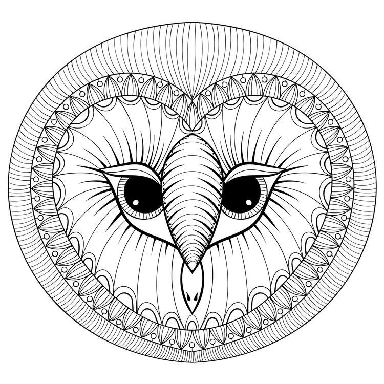 Cheri, the Owl