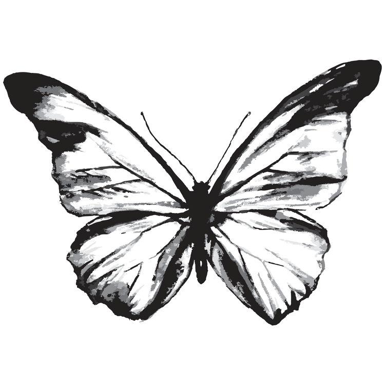 Ella, the Butterfly