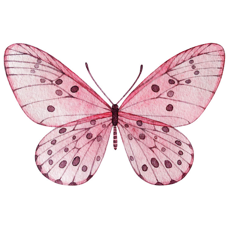 Freya, the Butterfly