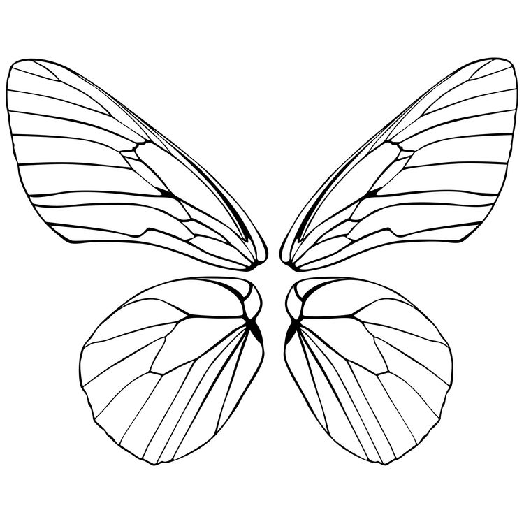 Olive, the Butterfly