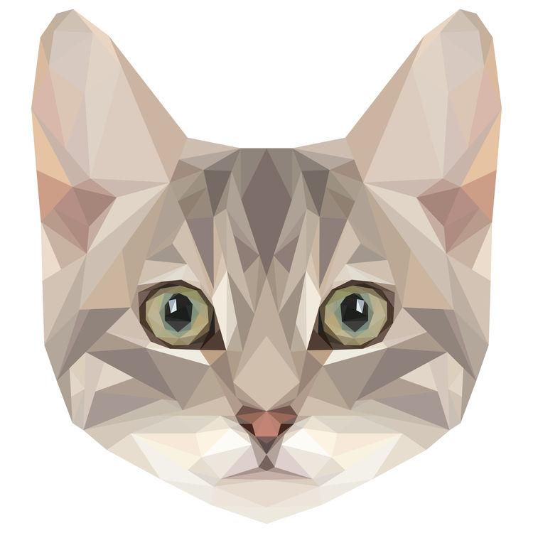 Reba, the Cat