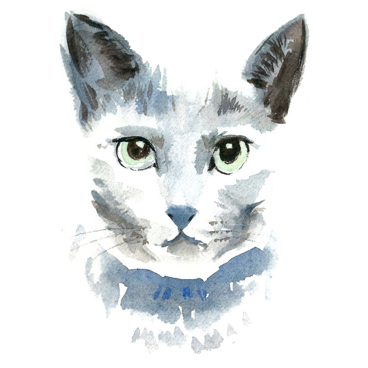 Gray Watercolor Stacey, the Cat