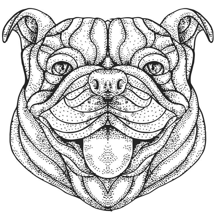 Happy John, the Bulldog