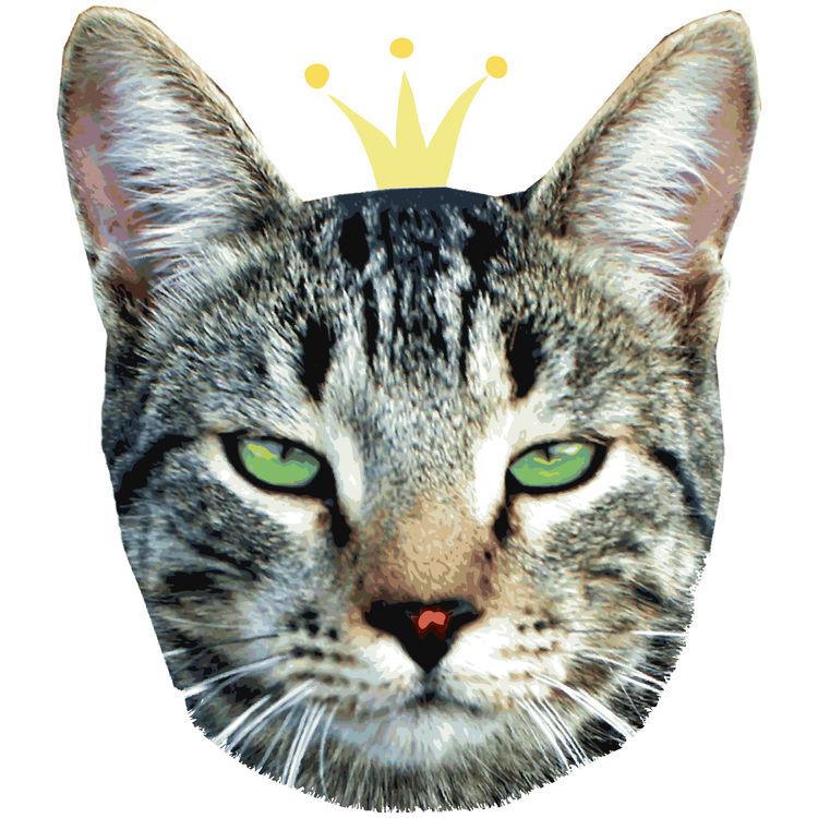 Queen Lola, the Cat
