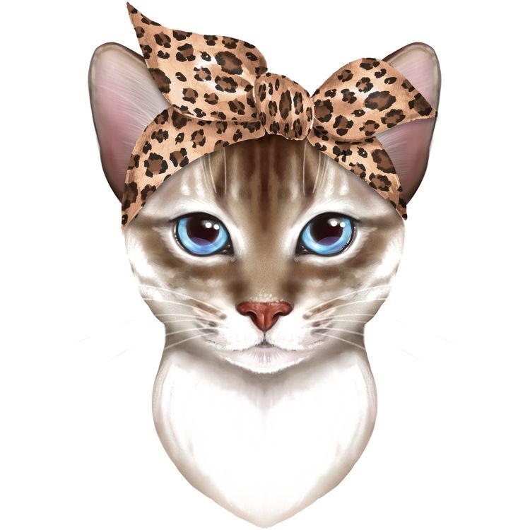 Sassy Jenny, the Cat