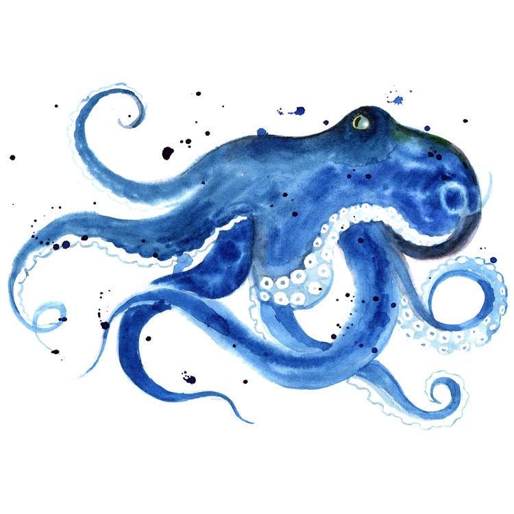 Oscar, the Blue Octopus