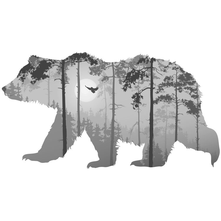 Black Forest Bear