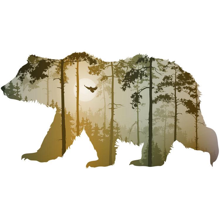 Orange Forest Bear