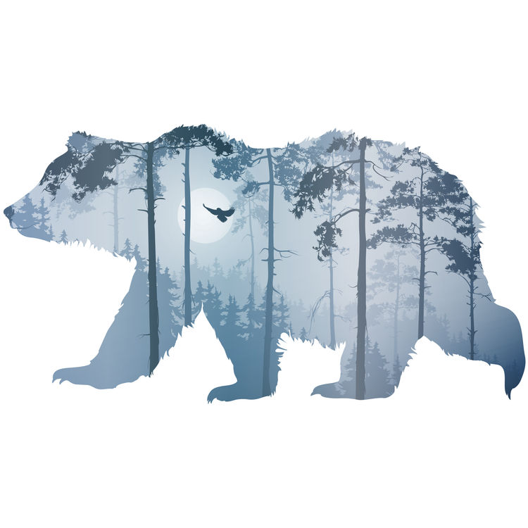 Blue Forest Bear