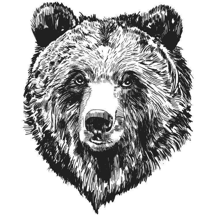 Jason, the Bear