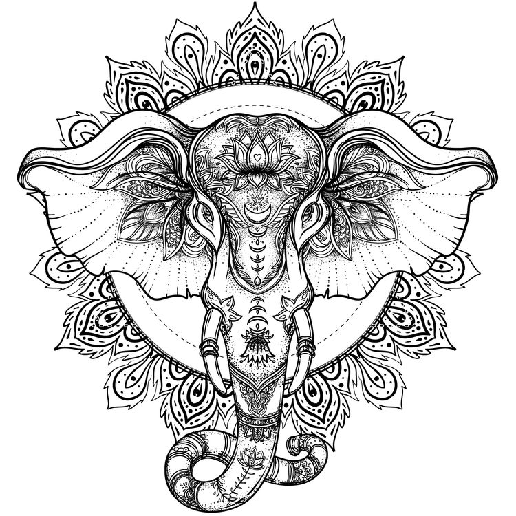 Jenny, the Elephant