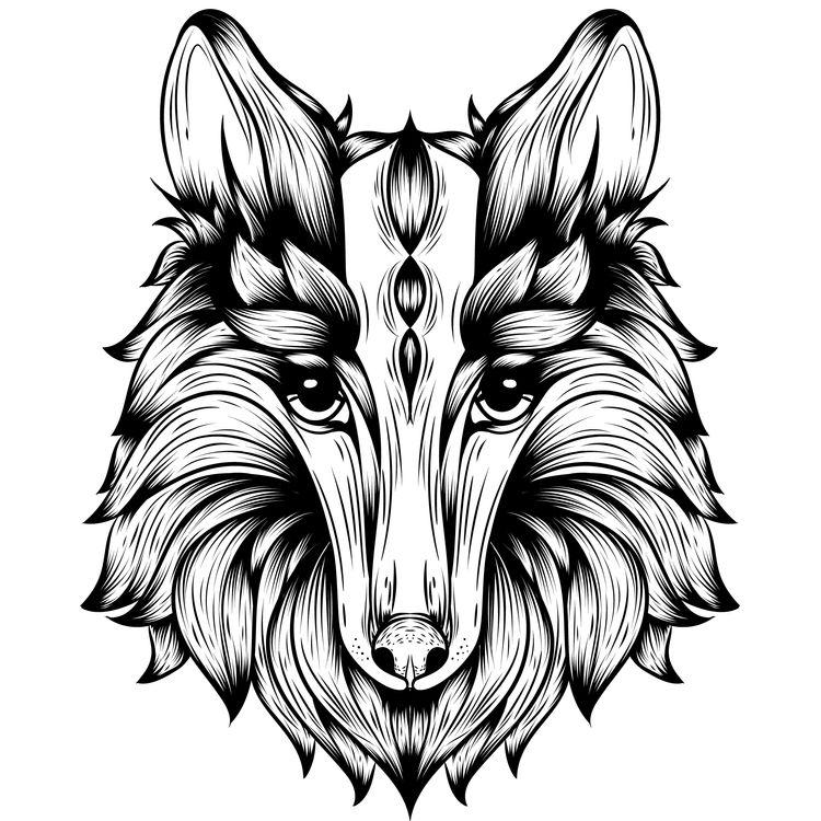 Long Pretty Wolf