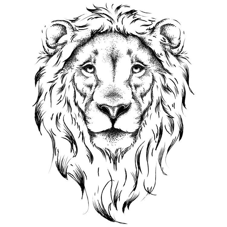 Luke, the Lion
