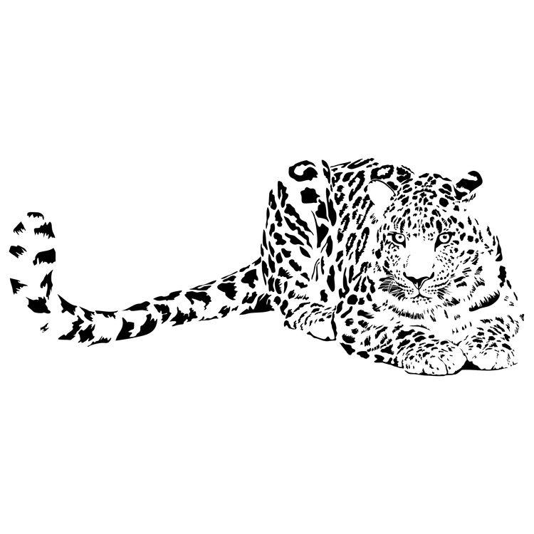 Black Dotted Resting Tiger