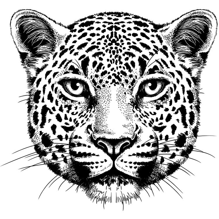 Bobby, the Leopard