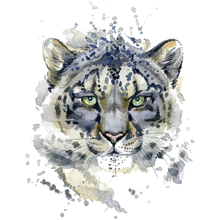 Watercolor Gray and Blue Tiger